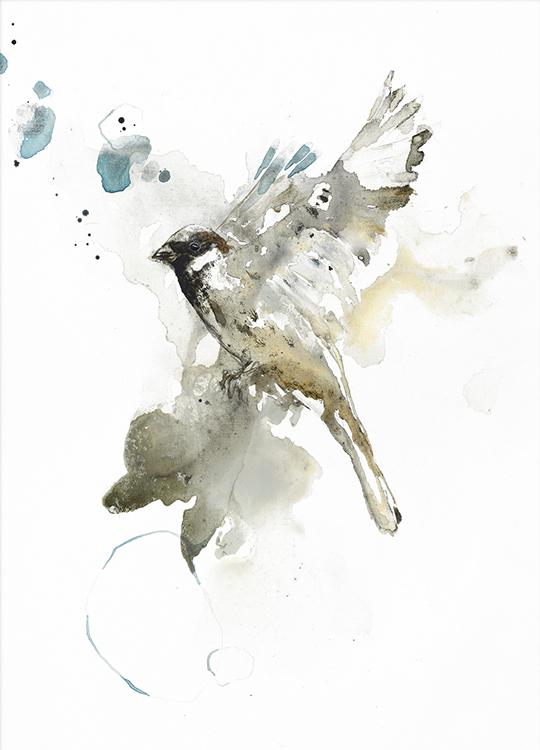 BIRD 1 POSTER, artroom, Artroom, nettgalleri, postere, bilder, rammer, plakater