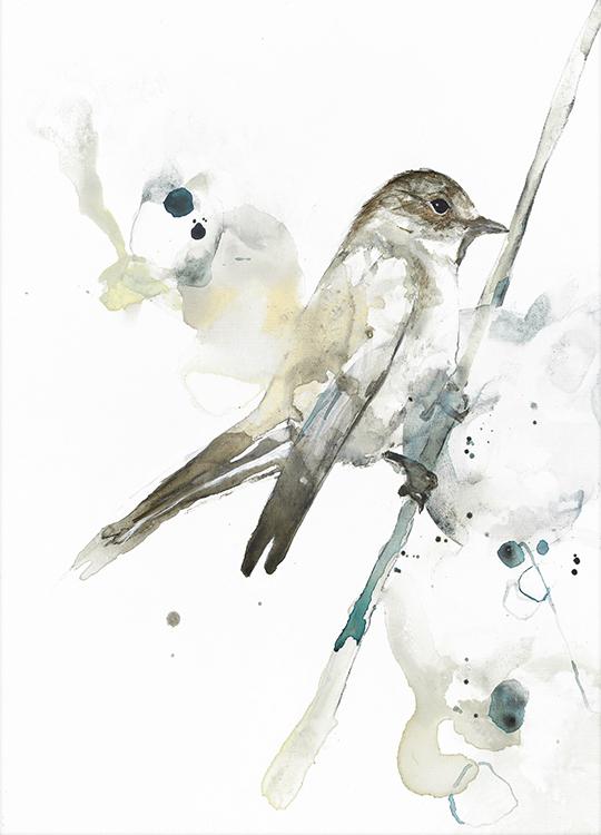 BIRD 2 POSTER, artroom, Artroom, nettgalleri, postere, bilder, rammer, plakater