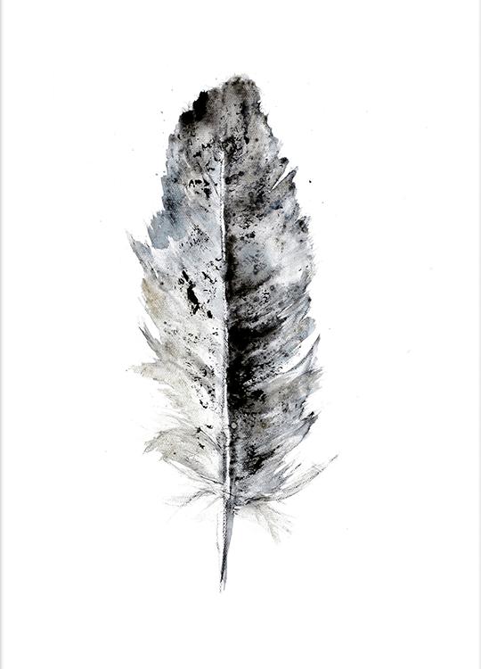feather 1 poster, artroom, Artroom, nettgalleri, postere, bilder, rammer, plakater