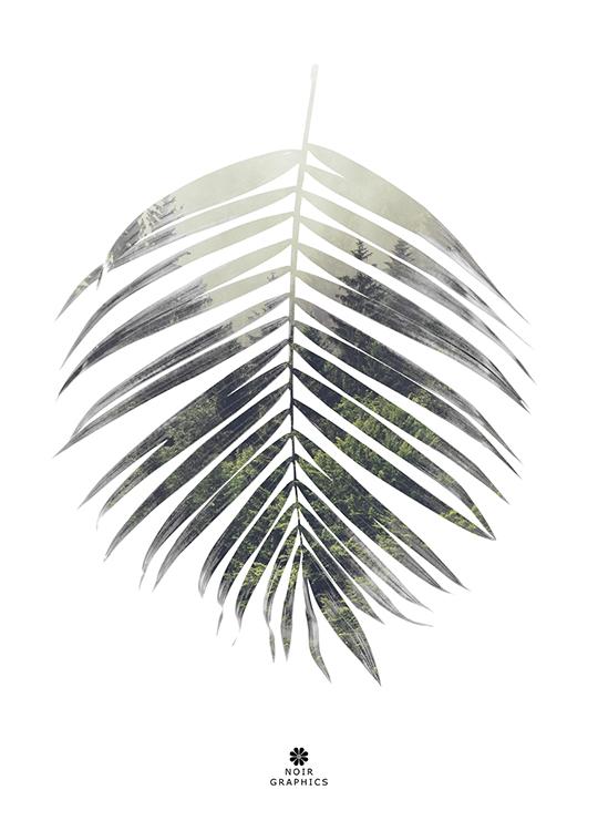 palm leaf poster, artroom, Artroom, nettgalleri, postere, bilder, rammer, plakater