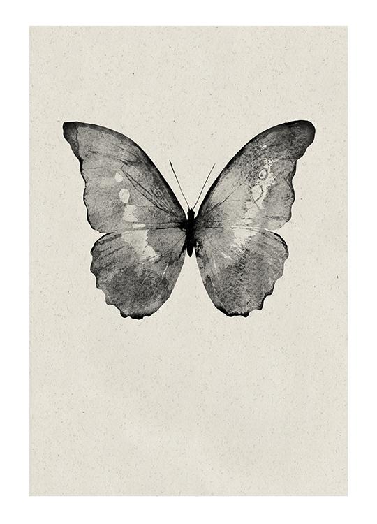 BLACK BUTTERFLY POSTER, artroom, Artroom, nettgalleri, postere, bilder, rammer, plakater