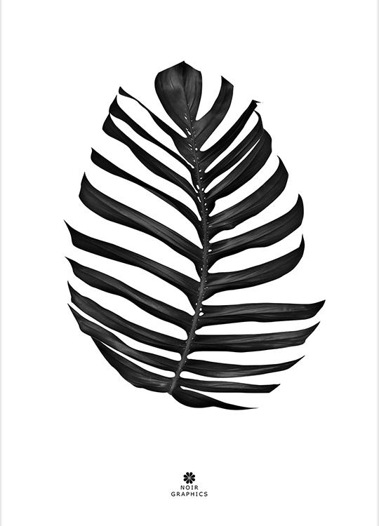 JUNGLE LEAF BLACK POSTER, artroom, Artroom, nettgalleri, postere, bilder, rammer, plakater