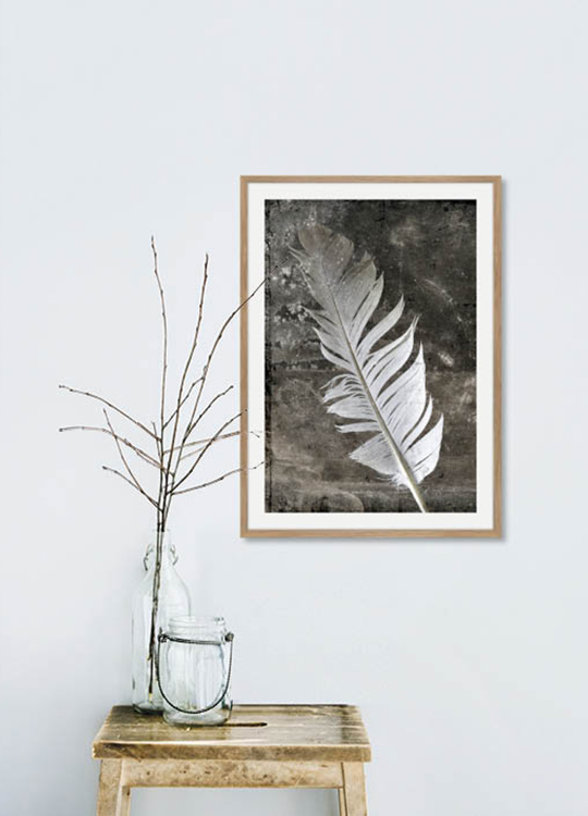 FEATHER RUSTIC POSTER