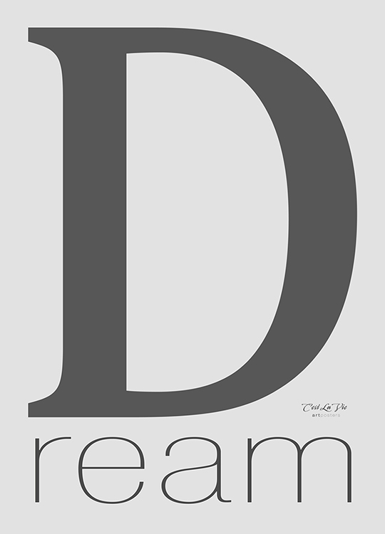 D REAM POSTER