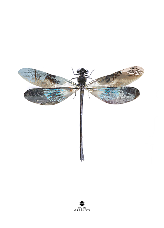 dragon fly poster, artroom