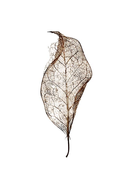leaf poster, artroom.no