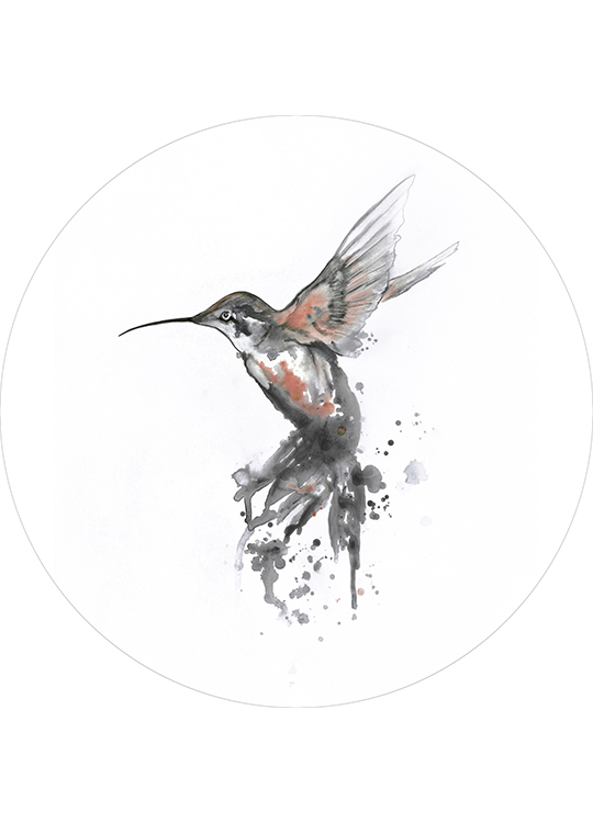 HUMMINGBIRD CORAL CIRCLE ART