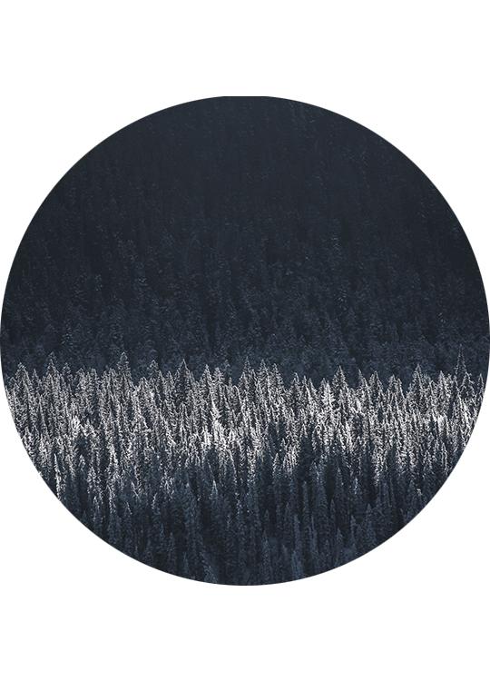 BLACK PINES CIRCLE ART