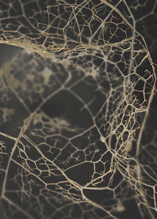 leaf skeleton dark poster, artroom.no