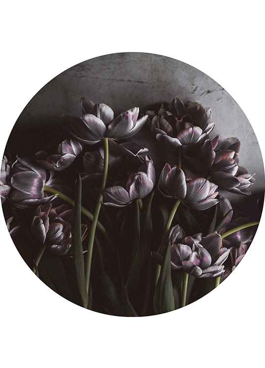 DARK TULIPS CIRCLE ART