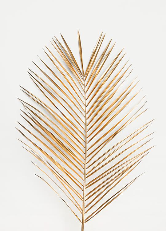 palm leaf gold poster, artroom.no