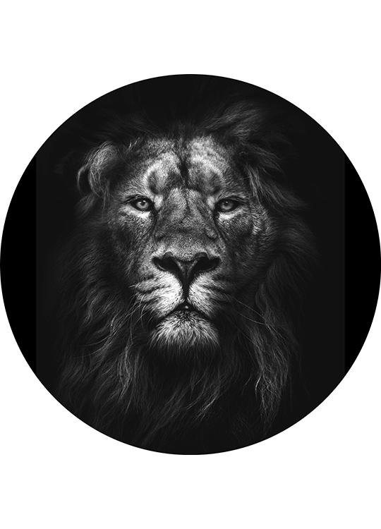 KING OF KINGS CIRCLE ART