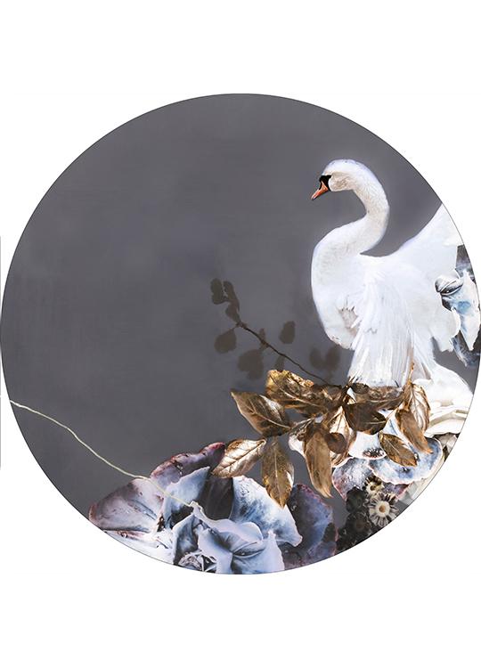 SWAN GOLD 2 CIRCLE ART, artroom.no